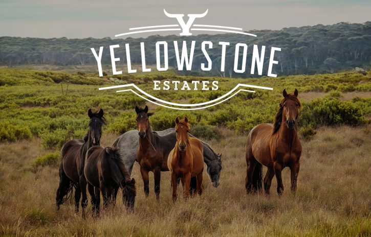 Yellowstone Estates Turn-Key Subdivision